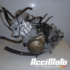 Dominator Exhaust Silencieux /échappement APRILIA DORSODURO 750 DB KILLER HP2