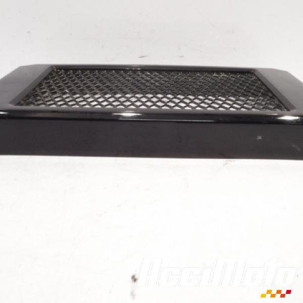 grille de radiateur