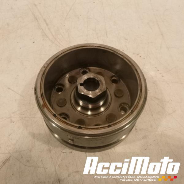 rotor d'alternateur